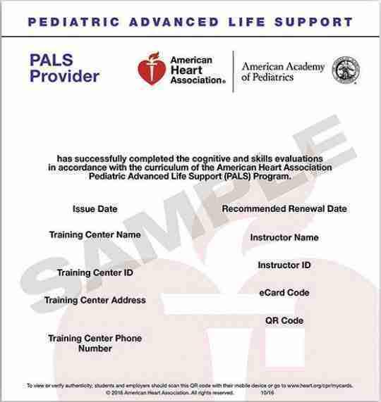 American Heart Association PALS ecard