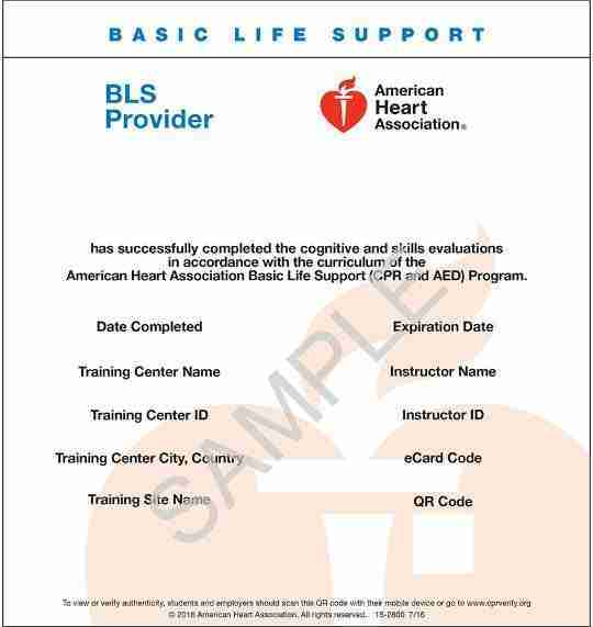 American Heart Association BLS ecard