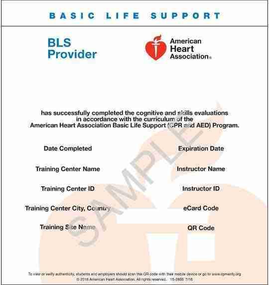 American Heart Association BLS ecard